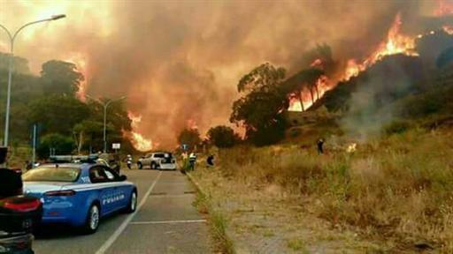 incendio vesuvio zona boscotrecase