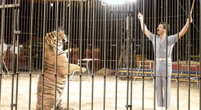 Tragedia al Circo Orfei, tigre sbrana l'addestratore Ettore Weber