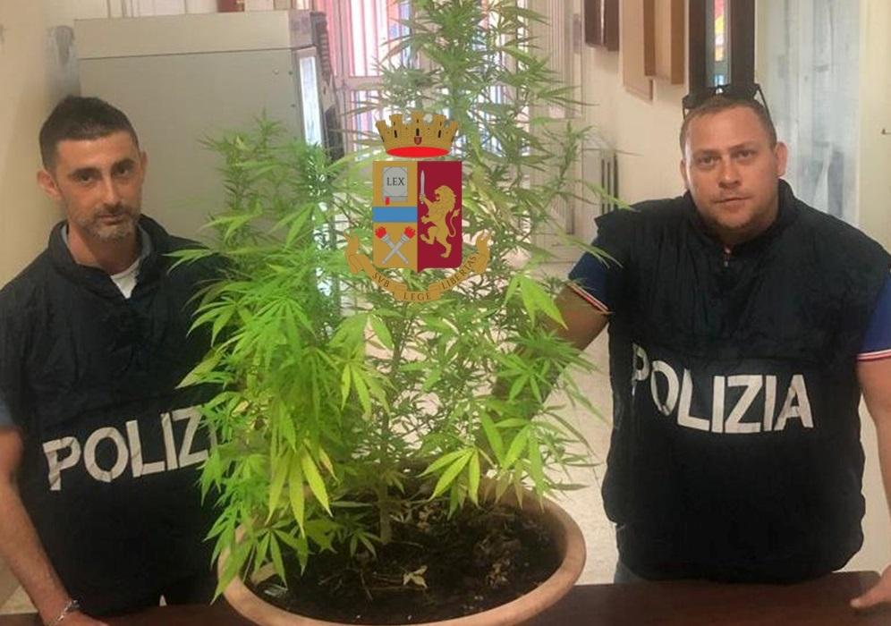 marijuana-napoli-posillipo