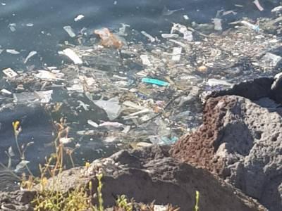 mare inquinato napoli