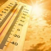 Campania ondata di calore
