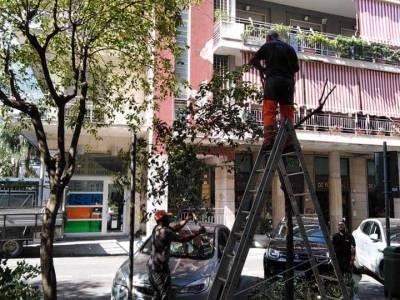 castellammare potature alberi