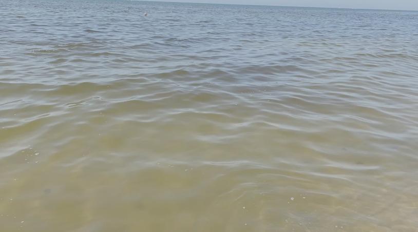 inquinamento litorale domizio