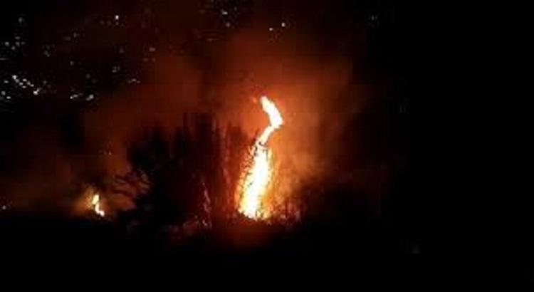 incendi ischia