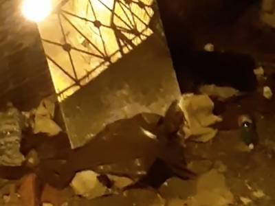 Napoli invasione di topi alle Rampe Paggeria