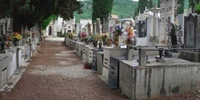 tomba genitori cagnolino, Muore mentre prega sulla tomba dei genitori, 45enne vegliato dal suo cagnolino